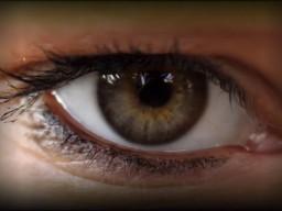 Eine spezielle Sehhilfe soll Blinde in Zukunft wieder sehen lassen.