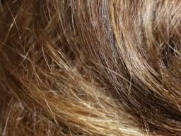 Protein in Haarzellen gibt über die innere Uhr Auskunft.
