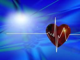 Ein Kalium- und Magnesiummangel kann zu Herzrhythmusstörungen führen.