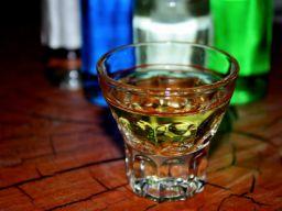 Bei alkoholgeschädigten Kindern tritt Epilepsie häufiger auf als bei Menschen, d