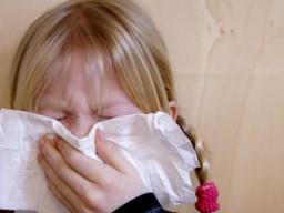 Ein neues Testverfahren soll Influenzaviren schneller als bisher nachhewiesen...