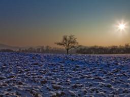Im Herbst und Winter sollte draußen Licht getankt werden, das hilft gegen ein ..